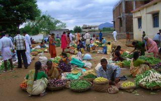 Bilder von Reisen zu Sai Baba